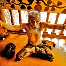 """""""El tigre y el Fakir"""". West Bengal"""